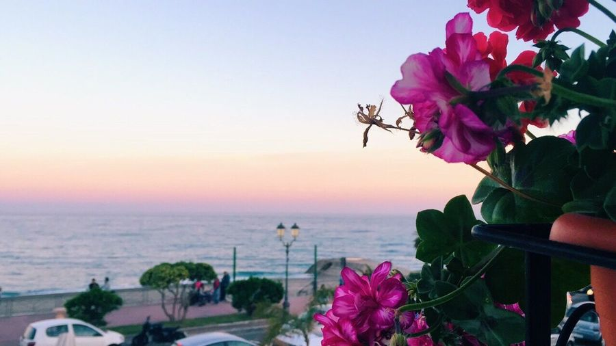 Calabria Italy View Sunset Tramonto Mare Siderno Lungomare