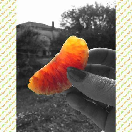 Fifty Shades Of Orange fruit veins instafruit instacolor multicoloured follow followme