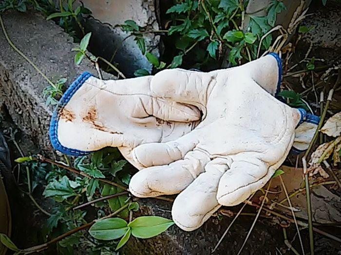 Glove Gloves The Great Outdoors With Adobe IpatingaCitys Limoeiro-ipatinga Corregonovo-limoeiroipatinga Learn & Shoot: Balancing Elements