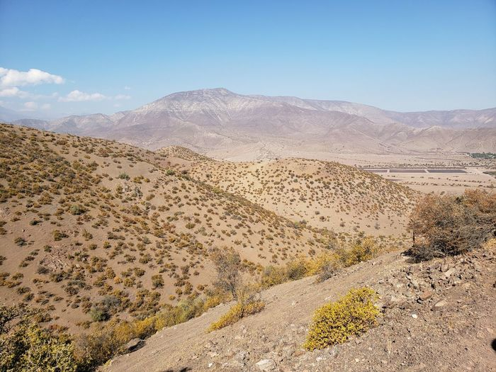 Mountain Desert