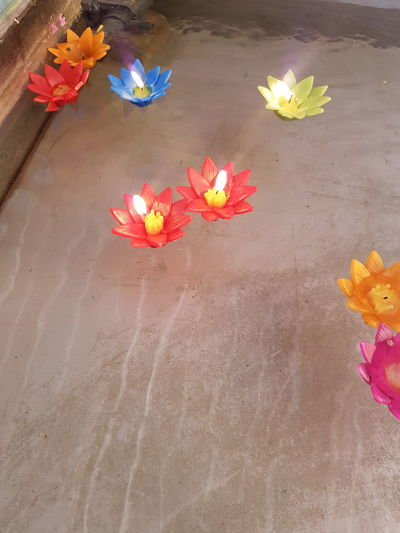 Candlelight Candle Red Candle Floating Candle Floating Candles Candlelights Flower Multi Colored Flower Head Sand High Angle View Painted Image Close-up