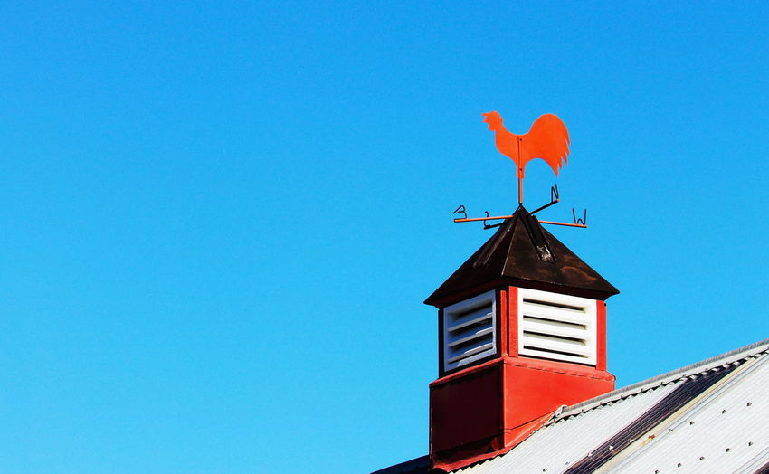 A close up image of a Red Rooster weather vane on top of a farm building. Copy Space East Farm Red South Weather Blue Sky Building Exterior Farm Building North Red Rooster West