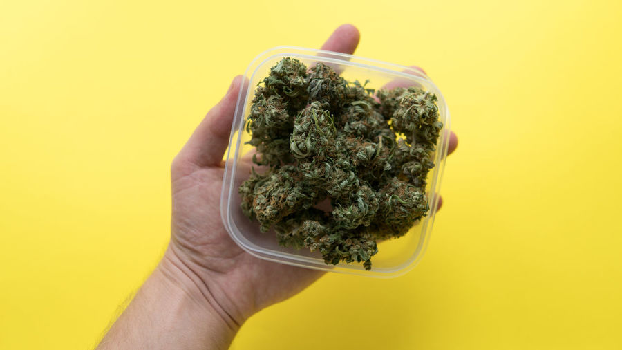 Cropped Hand Holding Container With Marijuana Over Yellow Background