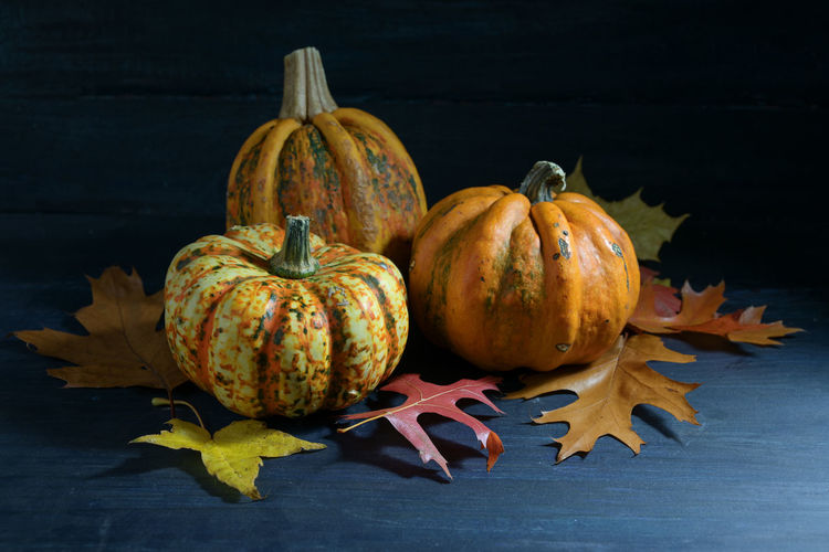 Close-up of pumpkins on table during autumn