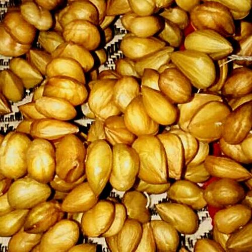 thaangi... a dry fruit Only In Chamba Himachal Pradesh