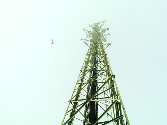 The Electric Tower Tower For Power Creative Power and a Buzzard
