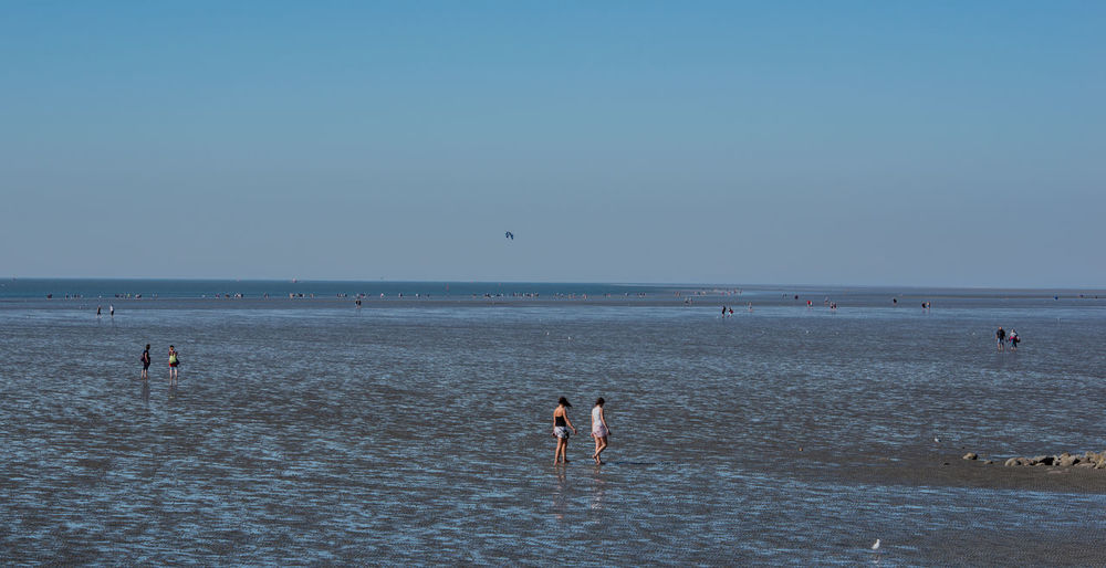 Wadden Sea on the North Sea coast Dunes Holidays Idyll National Park Nature North Sea Coast Schleswig-Holstein Beach Beach Chair Coast Dike Flood Landscapes Low Tide Natural World Heritage North Sea Priel Relaxing Holiday Sandbank Sea Tide Tides Wadden Sea Water Waterside