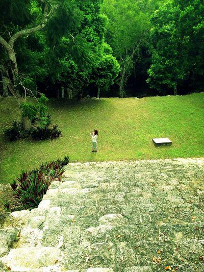 Kinichná Complejo de Ruinas Mayas Quintana Roo OPB Mexico