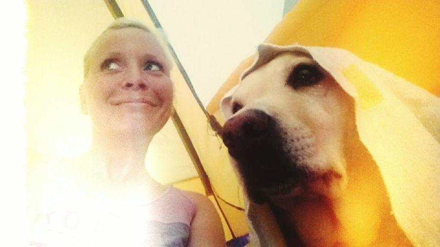 Tent Friendship Friends Labrador Labrador Retriever Lotte Hikking Norway 2015 Just Smile