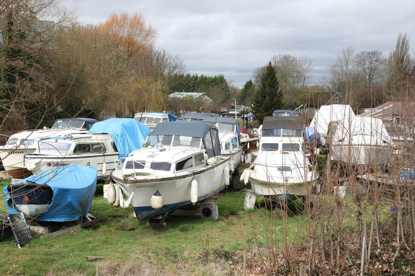 Bare Tree Beached Boats Boats On Land Day Docked First Eyeem Photo Nature No People Outdoors Sky Sky And Clouds Surrey Countryside Tree Trees