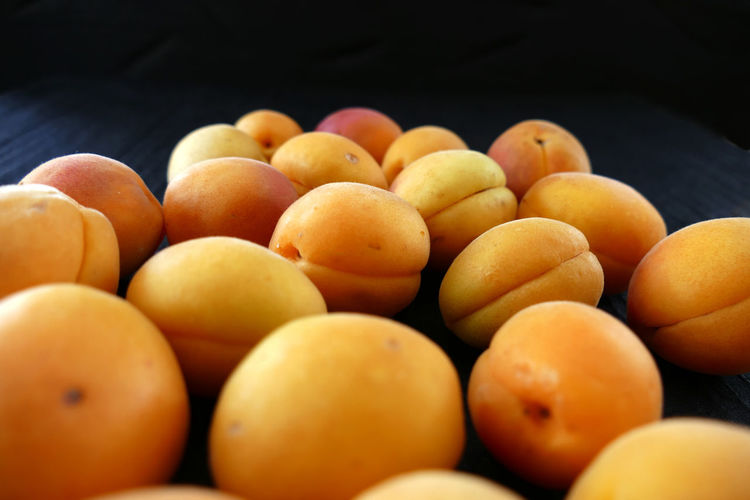 50+ Apricot Pictures HD | Download Authentic Images on EyeEm