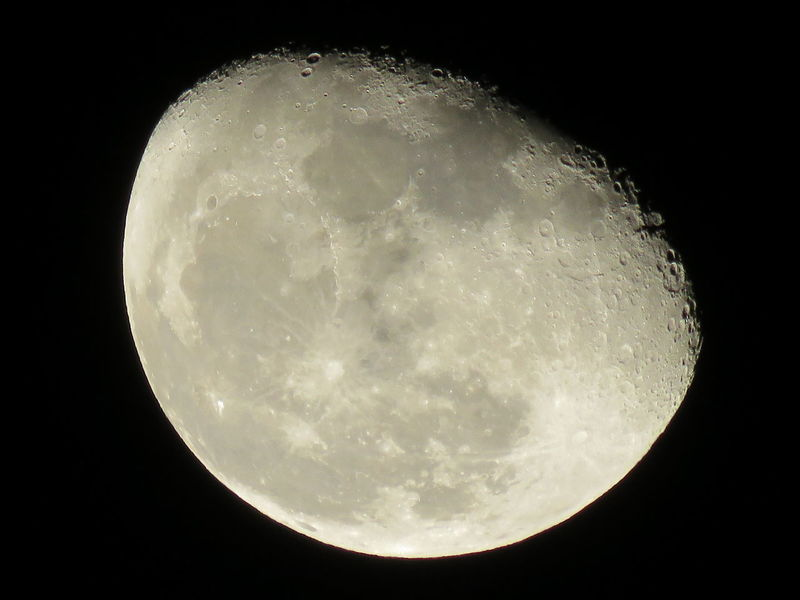 The Moon Phase today, Saturday, October 31, 2015, is in a Waning Gibbous Phase. First phase after the Full Moon. The moon will rise later each night setting after sunrise in the morning. Canonphotography Waning Gibbous Moon GwenSutton Moon Phases EyeEm Nature Lover Lunar Photography EyeEm Best Shots