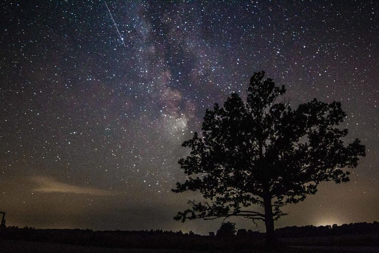 Astronomy Beauty In Nature Constellation Galaxy Landscape Milky Way Nature Night No People Outdoors Scenics Silhouette Sky Space Star - Space Tranquil Scene Tranquility Tree