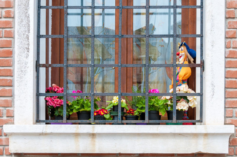 A typical window decoration in Venice, Italy Italy 🇮🇹 Venice Italy Architecture Building Exterior Built Structure Curtains Day Flower Outdoors Plant Toy Window Window Box Window Guard