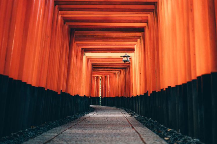 Architecture EyeEm Selects Footpath Gate In A Row Japan Shrine Spirituality TORII Tradition Travel Built Structure Empty Fushimi Inari Shrine Kyoto No People Orange Color Religion Shinto Street Streetphotography Sunrise Travel Destinations