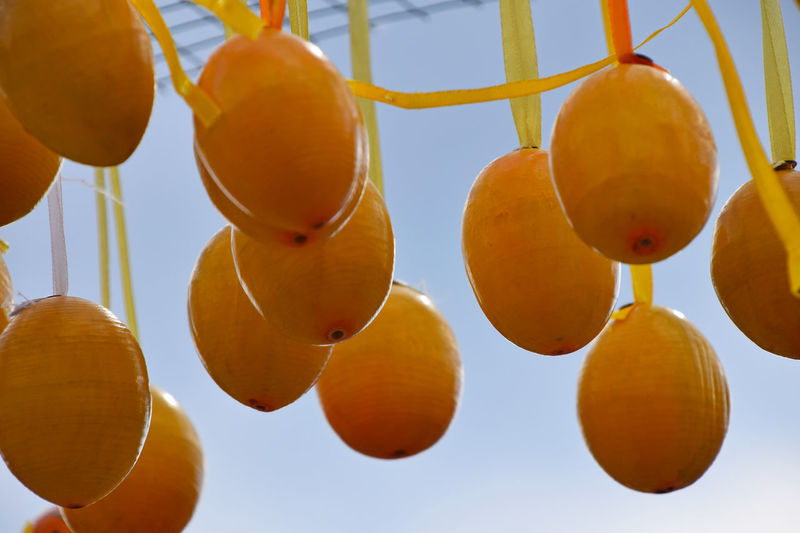 Easter eggs festival Celebrating Celebration Colors Decor Decorated Decoration Easter Easter Eggs Eggs Fest Festival Festive Hanging Holiday Low Angle View No People Ornate Painted Ribbon Season  Vivid Colours  Wooden Yellow