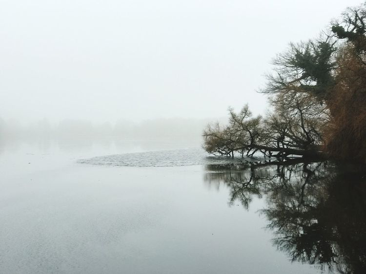 Lake ice winter quiet fog