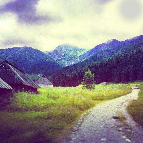 T A T R Y ♥ Jestpieknie Tatras Road Path mountains forest poland landscape walking hiking nature valley tatry góry trip hut cottage tagsforlikes tflers instagood tweegram photooftheday me instamood cte