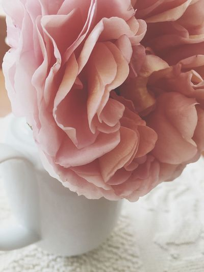 Flowers Roses Rosé Flower Head Nature Elégance Bouquet Flower Fragility Beauty In Nature Freshness Glamour Nature Harmony Rose - Flower Flower Collection Home Home Decor Home Decoration  Interior Design Rose Collection Roses Are Pink Flower Photography Decor Decoration Decorating