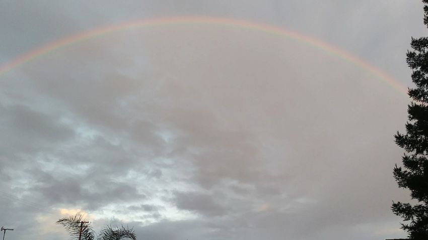 Rainbow Low Angle View Double Rainbow Multi Colored No People Cloud - Sky Tree Beauty In Nature Sky Nature