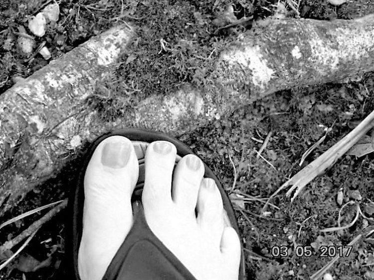 Human Foot Human Body Part Personal Perspective One Person Day Outdoors Sandal Close-up High Angle View St Agnes Blackandwhite Mossy Tree Root