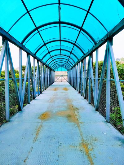 Greenhouse Plant Nursery Sky Plant Built Structure Elevated Walkway