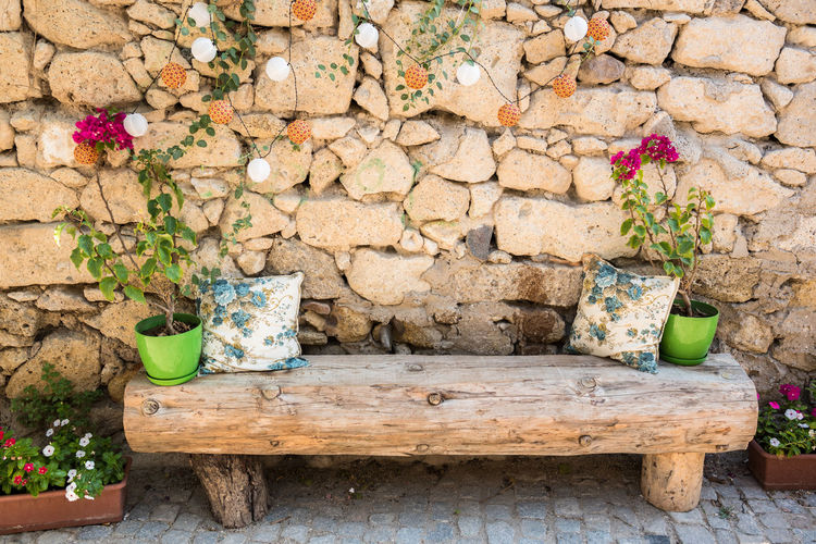Potted plant against stone wall