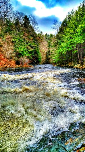 Landscapes With WhiteWall Photography In Motion EyeEm Gallery My Style ❤ EyeEm Nature Lover March Showcase Eyem Community Nature Photography Waterscape Trees And Sky Waterfall Riverscape RoaringRivers Barre Massachusetts New England  Eye4photography  L.Adkins Photography