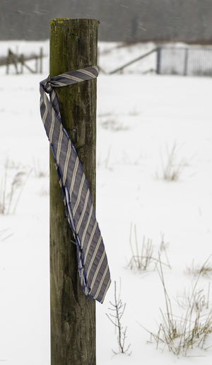 Close-up of wooden post on snow covered field