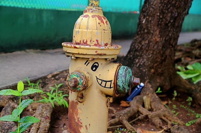 Hydrant Pretending Close-up Day Fire Fighter Focus On Foreground Friendly Fire Fighter No People Outdoors Smiling Smiling Face Snoopy Love Water