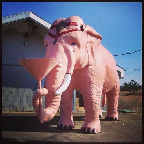 Cross Plains TN Roadsideamerica PinkElephant
