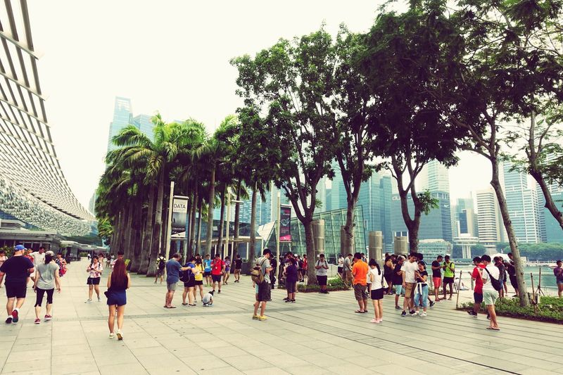 Internet Addiction Smartphone Zombies Large Group Of People Garden By The Bay Singapore People And Places