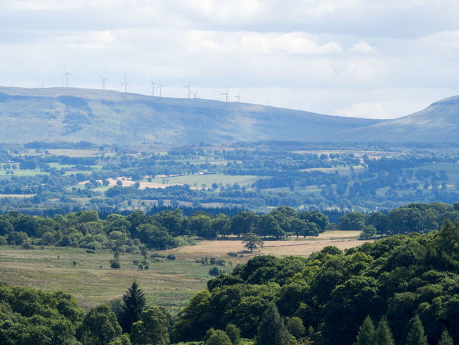 View of Wind Turbines from Queen Elizabeth Forest Park in Aberfoyle Power Queen Elizabeth Forest Park Wind Turbine Aberfoyle Beauty In Nature Day Field Green Power Landscape Nature No People Outdoors Renewable Energy Rural Scene Scenics Sky Tranquil Scene Tranquility Tree Windmill
