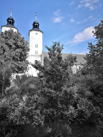 Tree Lighthouse Guidance Direction Protection Safety Tower Security Sky Architecture