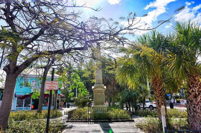 key west fl, Fun lol Beautiful Vacation Time Getting Inspired Enjoying Life Palm Trees Pretty Trip Interesting Check This Out Eye4photography  Outdoor Photography Outside Photography Island Cool Edit Landscape_Collection Landscapes