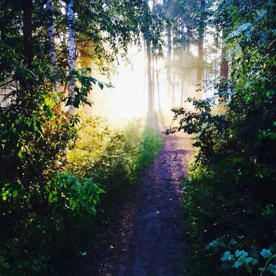 доброе утро Run#girl#me#fit#спорт#я#утро#пробежка фотобезфильтра люблюутро👻💖💖💖💖💖 Relaxing