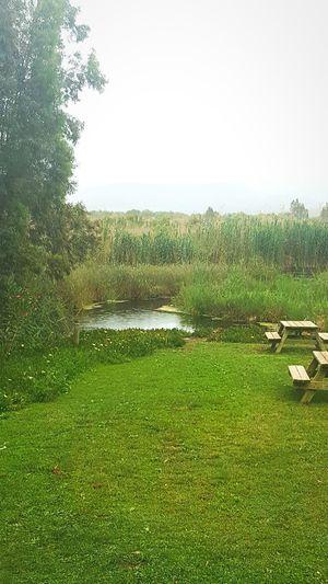 Akyaka Marmaris, Turkey Relaxing Rain Gokova Akyaka Very Nice Azmakçayı Azmaknehri