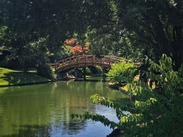 Bridge over water in missouri botanical gardens