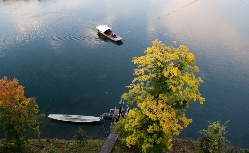Adult Adults Only Agriculture Basel, Switzerland Beauty In Nature Day Ferryboat Floating On Water Lake Münster Fähre Münster, Kirche, Church Nature Nautical Vessel Outdoors People Plant Reflection Rhein, River, Water Scenics Tranquility Travel Destinations Tree Water