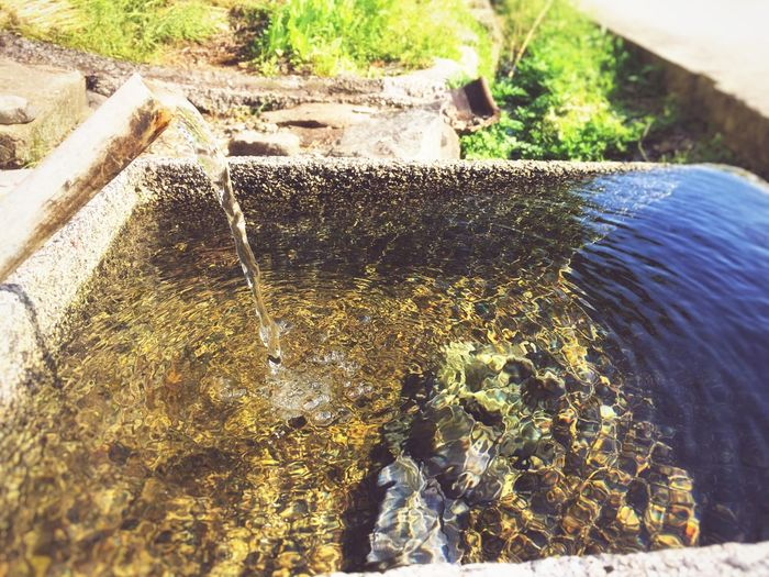 灵动的水带走时间的回忆。(75/365)