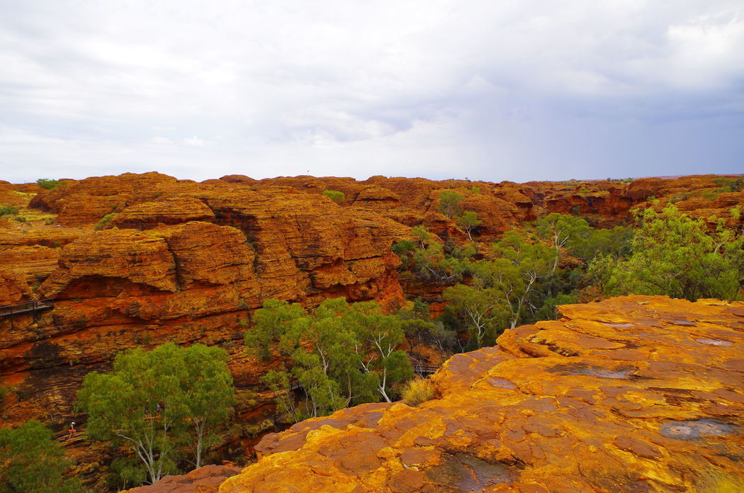 Kings Canyon Nature Rock Formation Trees Cloud-sky Day Landscape Outdoors