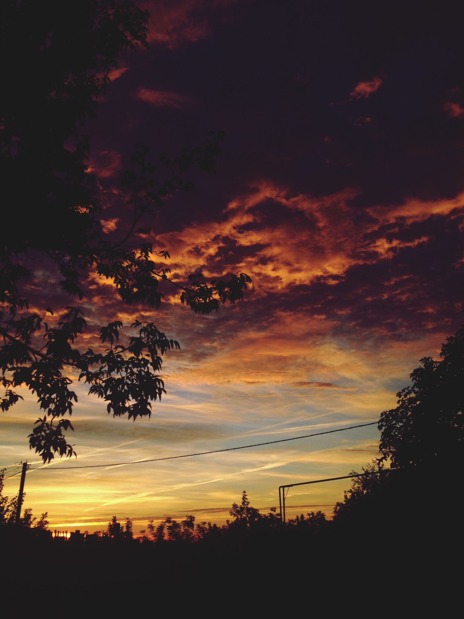 sunset, sky, cloud - sky, silhouette, beauty in nature, tree, plant, scenics - nature, tranquility, nature, no people, orange color, tranquil scene, outdoors, growth, low angle view, idyllic, non-urban scene, dramatic sky, branch