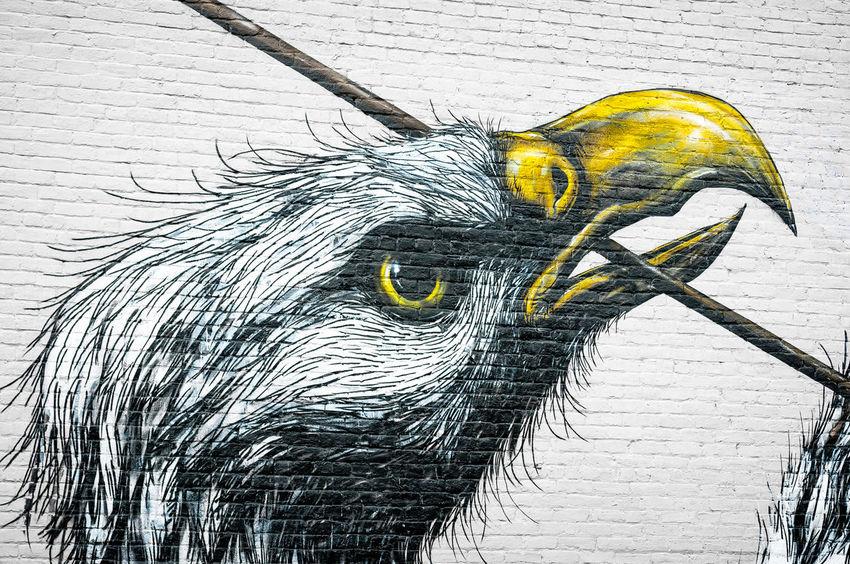 Richmond, VA USA Street Art Animal Themes Arrow Beak Bird Dachshund Injuredbird Mortally Wounded One Animal Richmond, VA Street Art Street Art/Graffiti Street Artist VCU VCU Artists