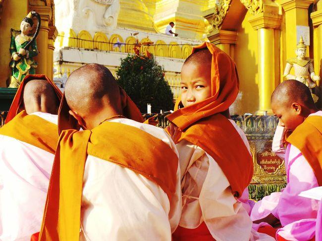 In between prayers. Nun Myanmar Yangon Temple Shwedagon Shwedagon Pagoda Nuns Praying Curiosity Pagoda