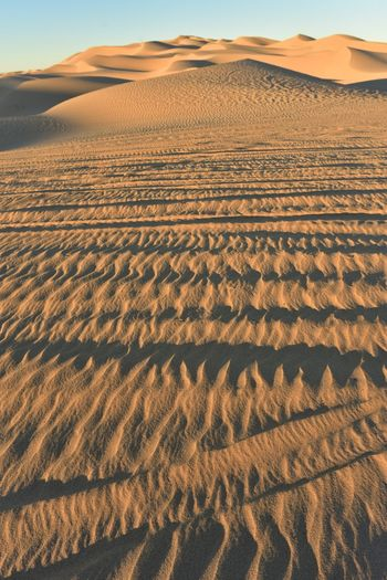 Early morning golden hour light illuminates the texture in the sand left by tires from off road vehicles or ATVs (All Terrain Vehicles) driving over the sand dunes at Imperial Sand Dunes, California, USA ATV Riding Off Road Driving Atv Atveture Travel Desert Dunes Off Road Off Roading Sand Sand Dune Tire Track Tire Tracks Tire Tracks In Sand