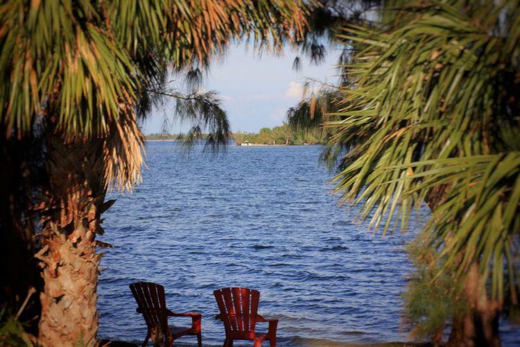 Riverside retreat Indian River Lagoon Melbourne Florida Florida Nature Lagoon Florida Life Indian River Waterfront Palm Trees