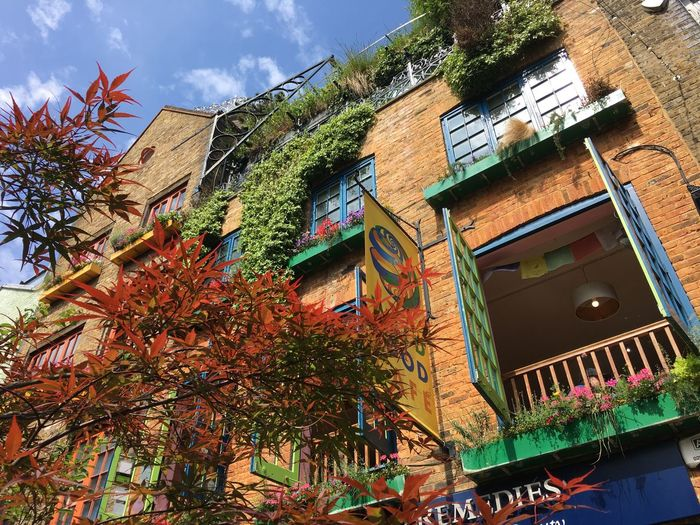 Neal's Yard in London British Britain London Neal Yard Building Exterior Day No People Sunlight Cloud - Sky Multi Colored Decoration Outdoors Window Wall - Building Feature Tree