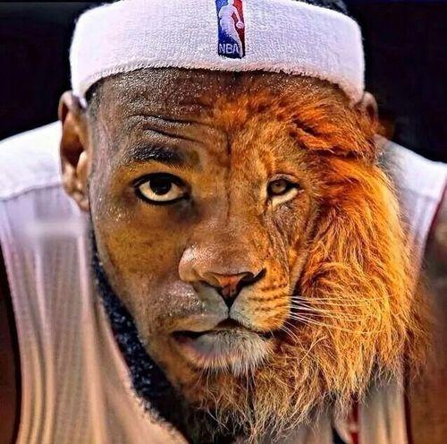 Basketball le seul sport qui me donne la joie. Lebron James