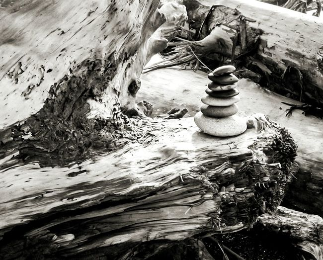 Black And White Photography River Rocks Rock Stacking Meditation Yoga Focus Stacking Mentalist Beautiful Nature Coast Life