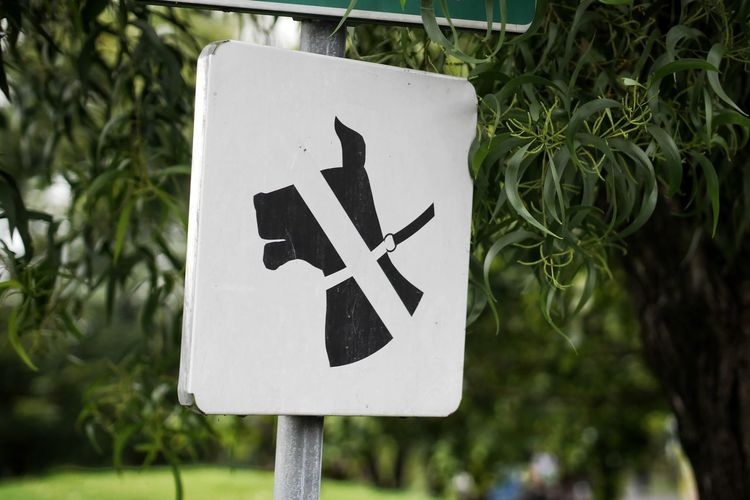Close-up of arrow sign on road